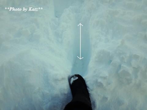 20140114 雪! (3)