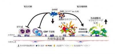 繧ュ繝」繝励メ繝」_convert_20130328113632 1