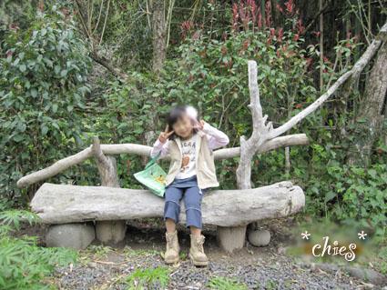 ryuuboku_20100402100508.jpg