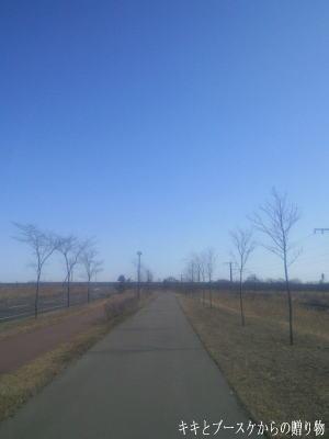 k2011-3-27-1.jpg