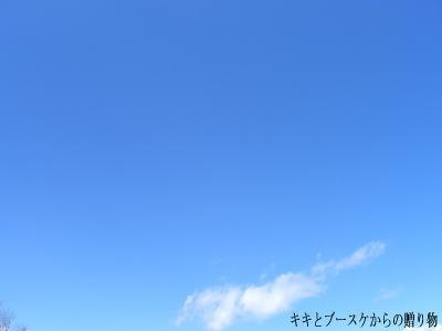 k2011-4-24-1.jpg