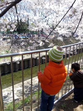 桜満喫奏太朗