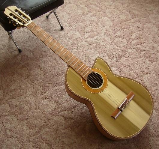 完成菊ギター第16号イメージ3