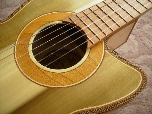 完成菊ギター第16号ロゼッタ1
