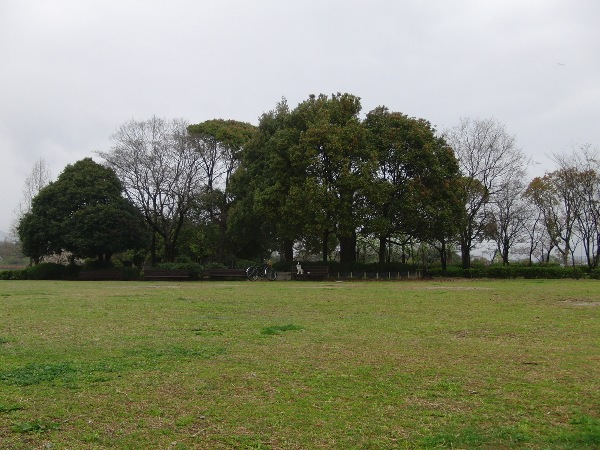 20120405-04