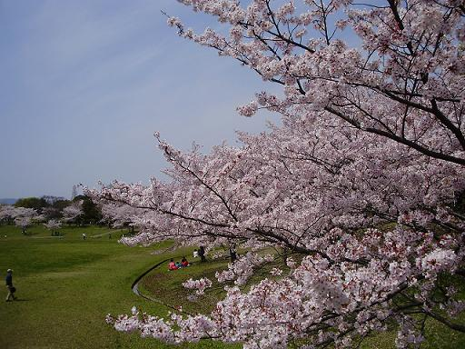 春日公園①