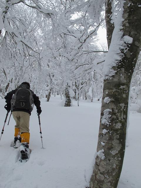 刈尾山スノーハイク