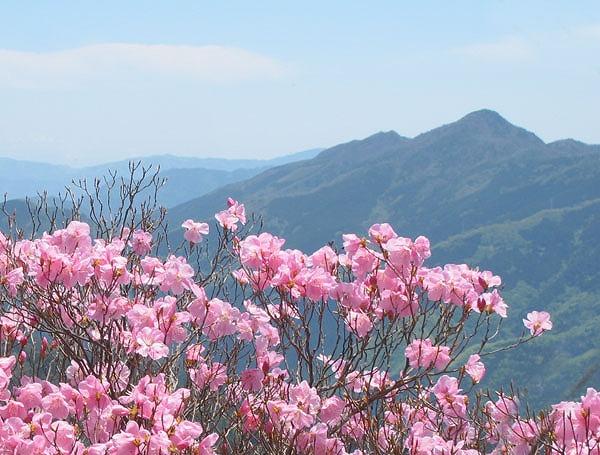 西赤石山1