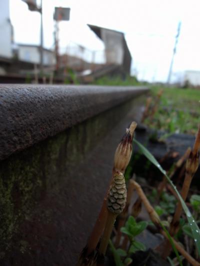 五箇荘駅_convert_20120413221730
