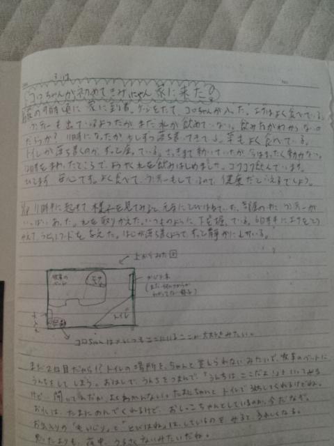 20130812_183544.jpg