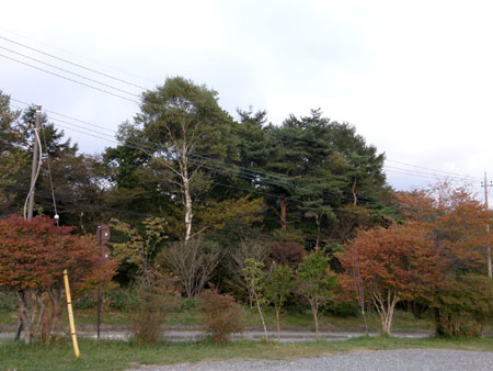 2010-10-7-4