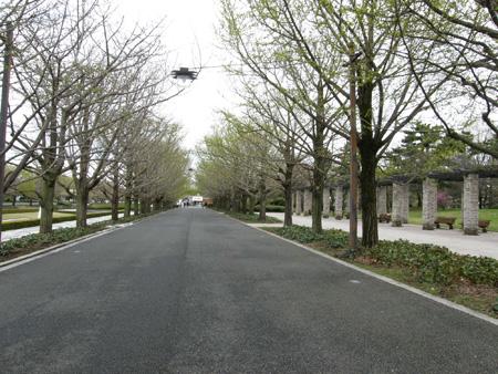 2010-4-22-5