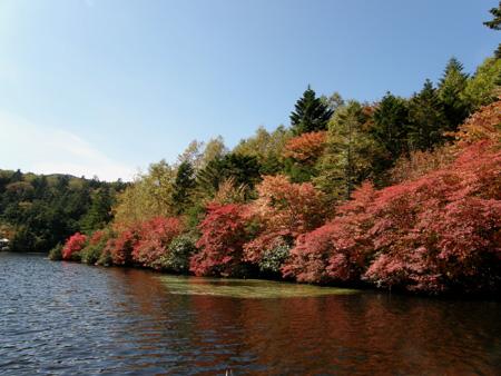 2011-10-4-4jpg.jpg