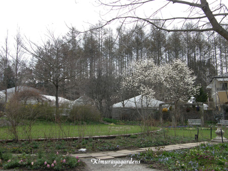 2011-4-29-3.jpg