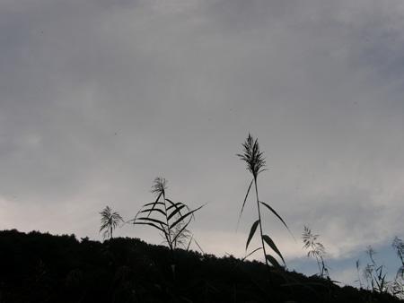 2011-9-16-3.jpg