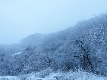 2012-1-20-4.jpg