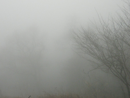 2012-2-23-1.jpg
