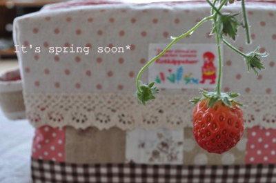 春色ポーチ