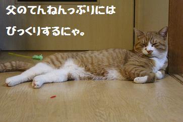 011_20130404212011.jpg