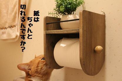 137_20130311105121.jpg