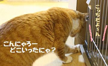 150_20130325200129.jpg