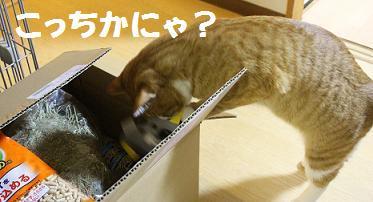 152_20130325200253.jpg