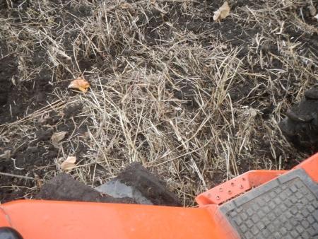 大豆後の耕起作業 (5)