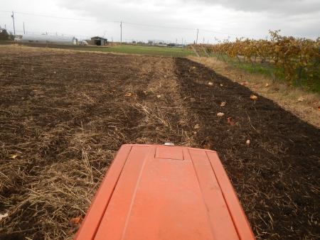 大豆後の耕起作業 (3)