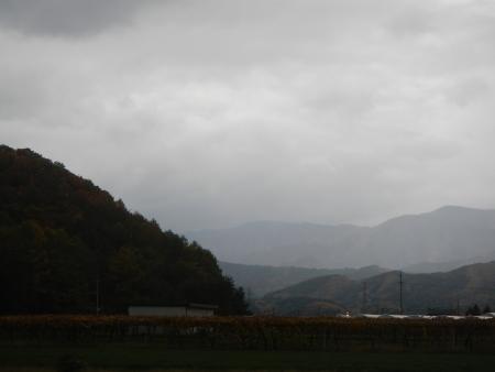 大豆後の耕起作業 (2)