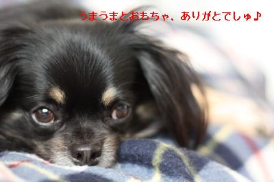 IMG_8759・2 コピー