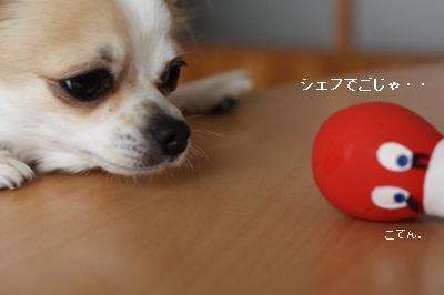 IMG_5464・2 コピー