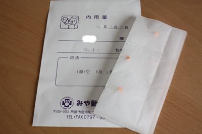 IMG_6012・2 コピー