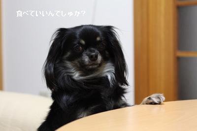 IMG_6160・2 コピー