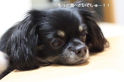 IMG_6189・2 コピー