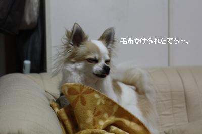 IMG_7160・2 コピー