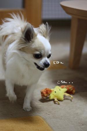 IMG_9545・2 コピー