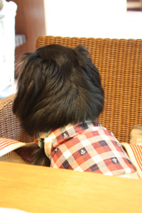 IMG_0389・2