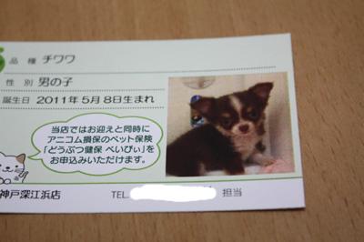 IMG_0571・2 コピー