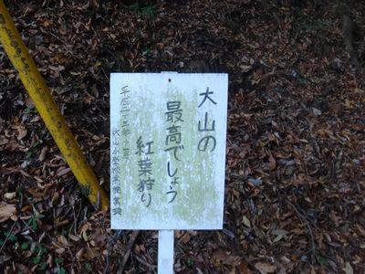 ooyama201411i.jpg