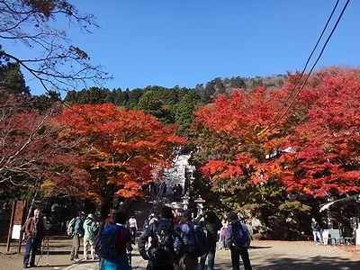 ooyama201411n.jpg
