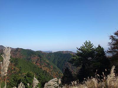 ooyama201411t.jpg