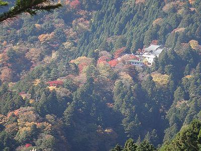 ooyama201411v.jpg