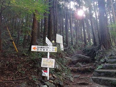 ooyama201411y.jpg