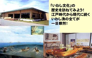 spot_iwashi.jpg