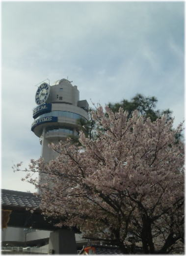 sakura2012-tenmonkagakukan.jpg