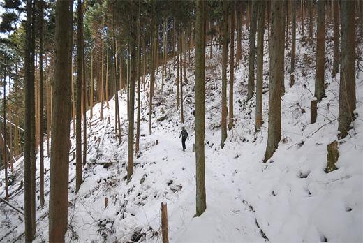 20110108-6.jpg