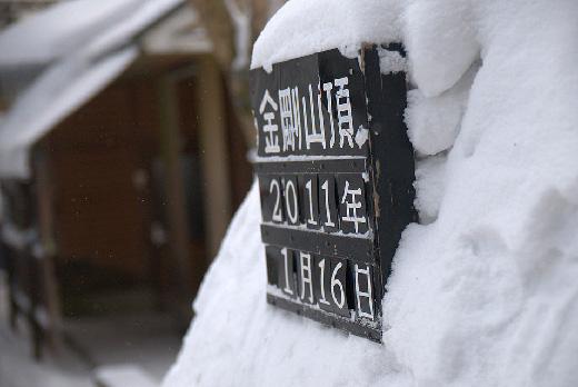 20110116-11.jpg