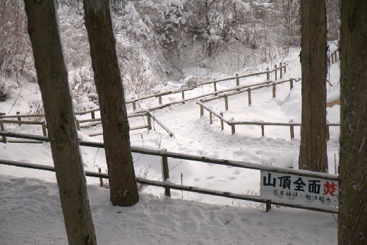 20110116-14.jpg