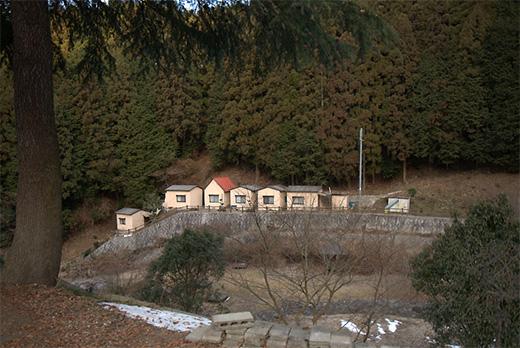 20110129-2.jpg