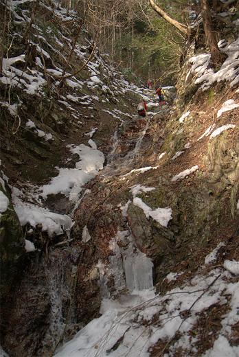 20110205-6.jpg